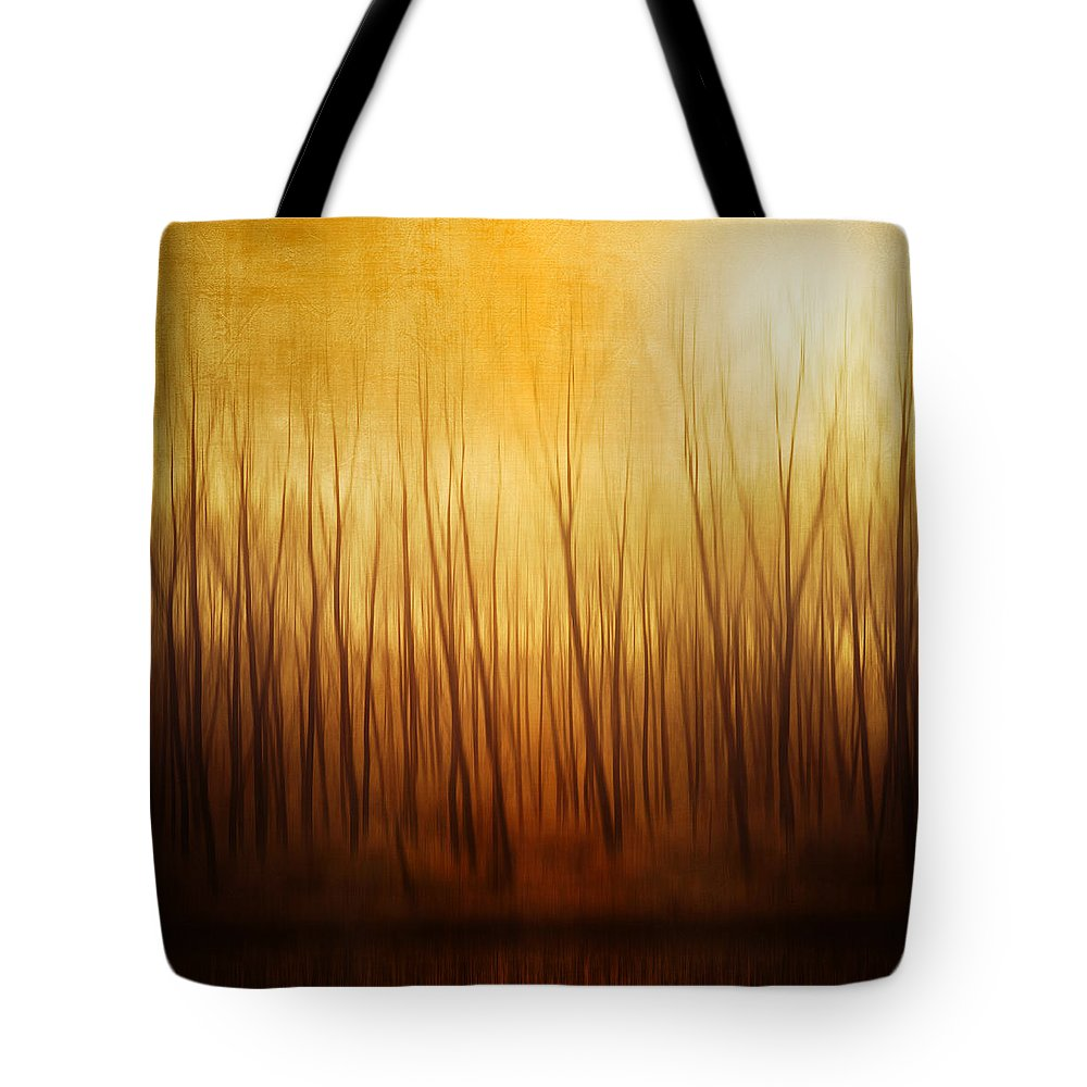 Dawn Tote Bag featuring the photograph Forest by Philippe Sainte-laudy Photography