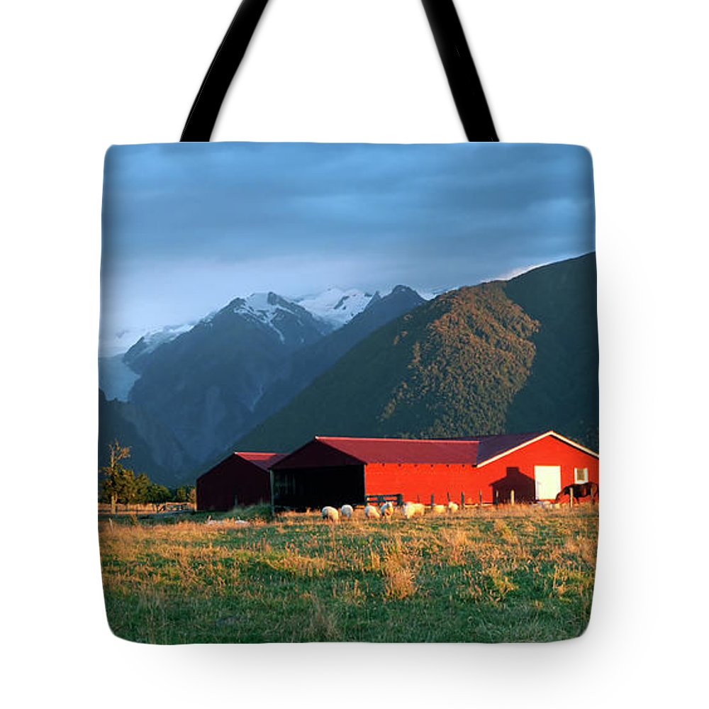 Horse Tote Bag featuring the photograph Fox Glacier Looms Over Plain by Dmathies