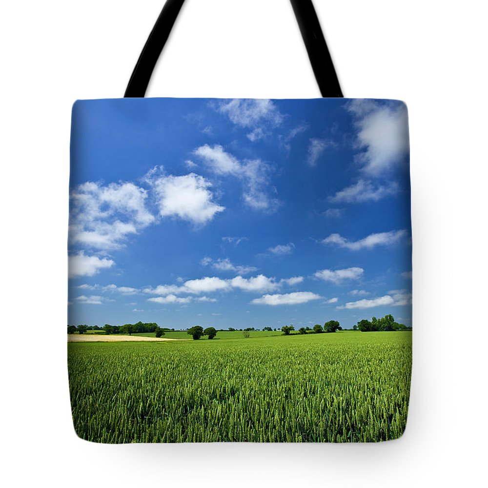 Environmental Conservation Tote Bag featuring the photograph Fresh Air. Blue Skies Over Green Wheat by Alvinburrows