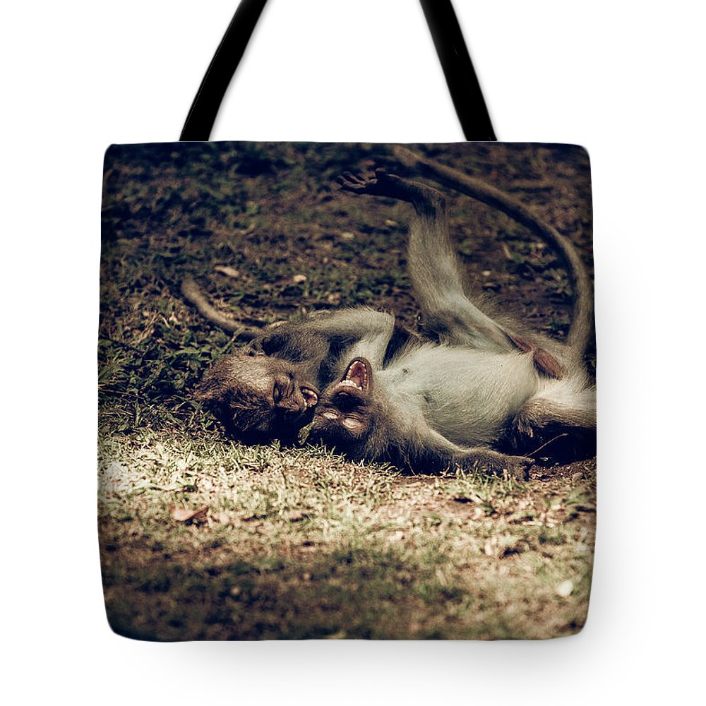 Kekak Tote Bag featuring the photograph Funny by Felipe Queriquelli