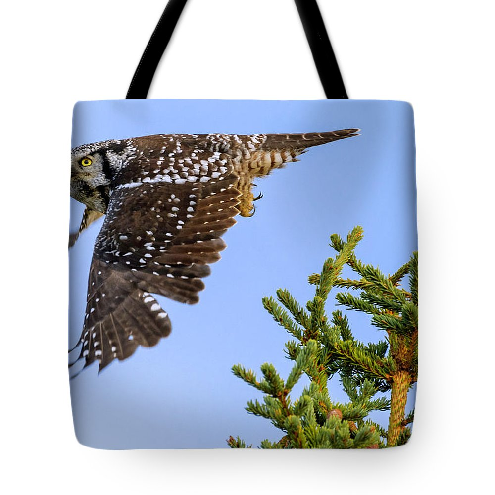 Glance Tote Bag featuring the photograph Glance by Chad Dutson