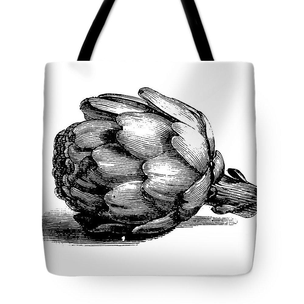 Italian Food Tote Bag featuring the digital art Globe Artichoke | Antique Culinary by Nicoolay