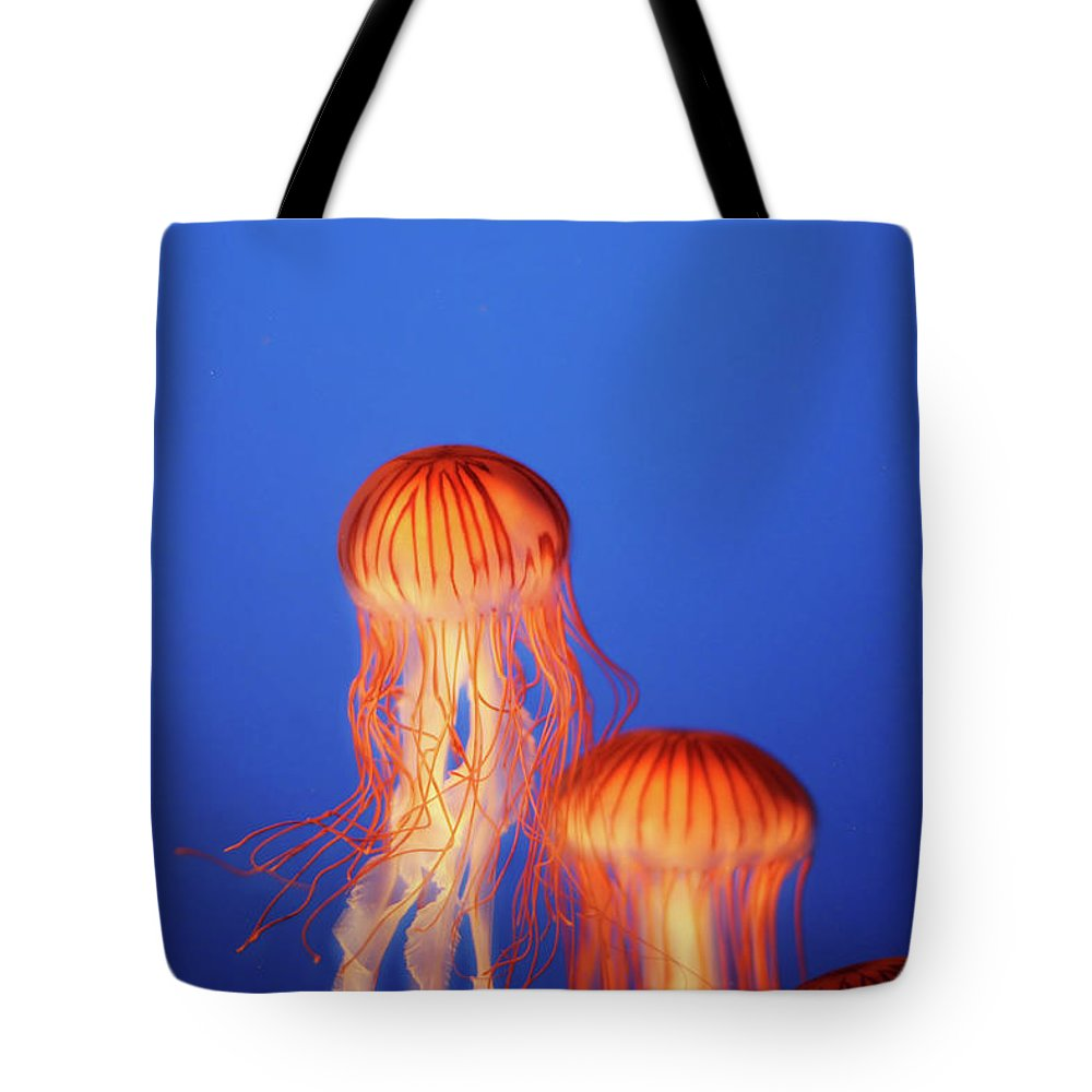 Underwater Tote Bag featuring the photograph Glowing Jellyfish Under Water by Indy Randhawa