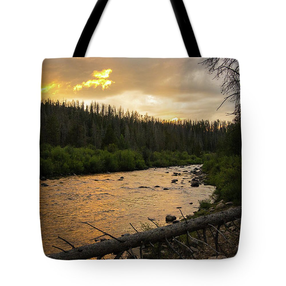 Colorado River Tote Bag featuring the photograph Golden Light by Jason Bohl