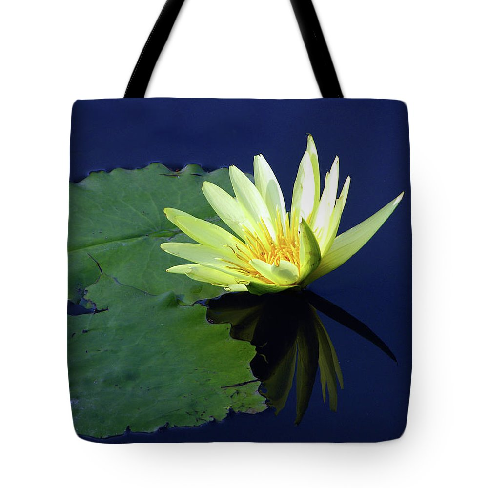 Water Lily Tote Bag featuring the photograph Golden Lily by John Lautermilch