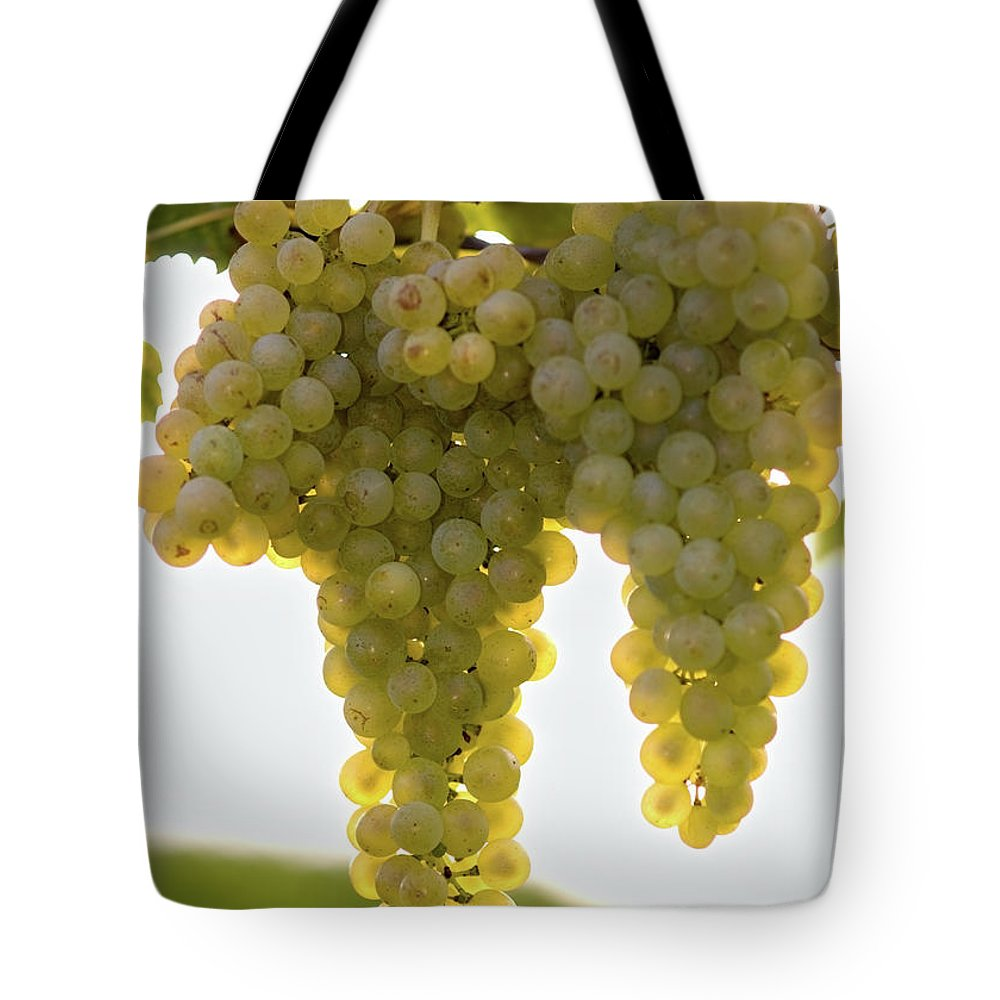 Sonoma County Tote Bag featuring the photograph Golden Wine by Farbenrausch