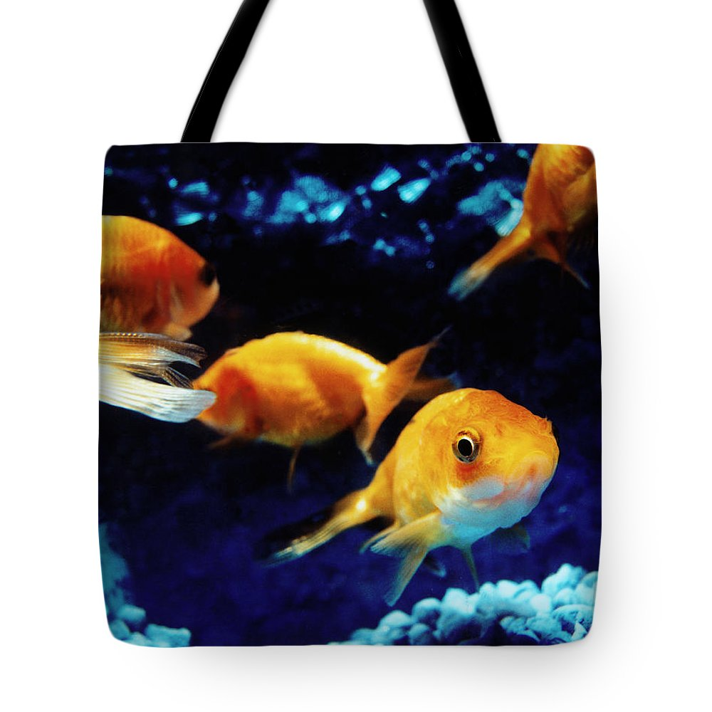 Pets Tote Bag featuring the photograph Goldfish In Fish Tank by Silvia Otte