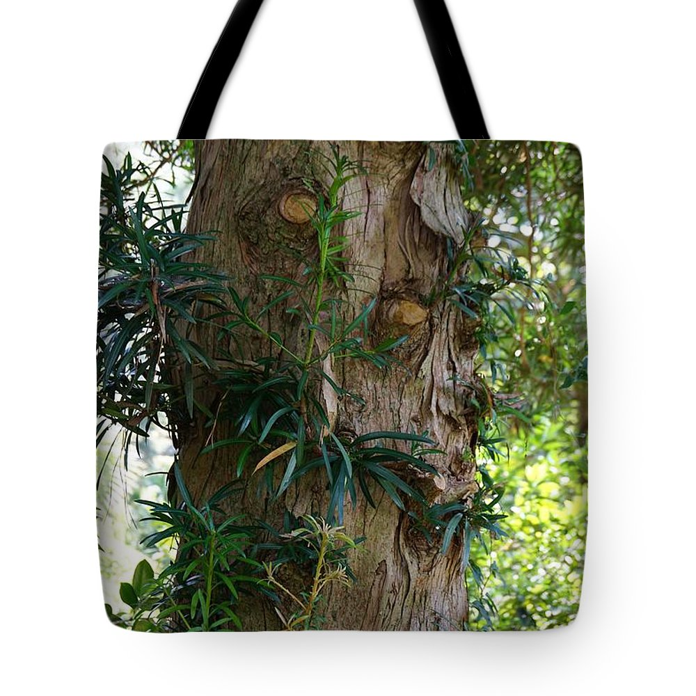 Tree Tote Bag featuring the photograph Good Things Come In Trees by Jacquelyn Ramsey
