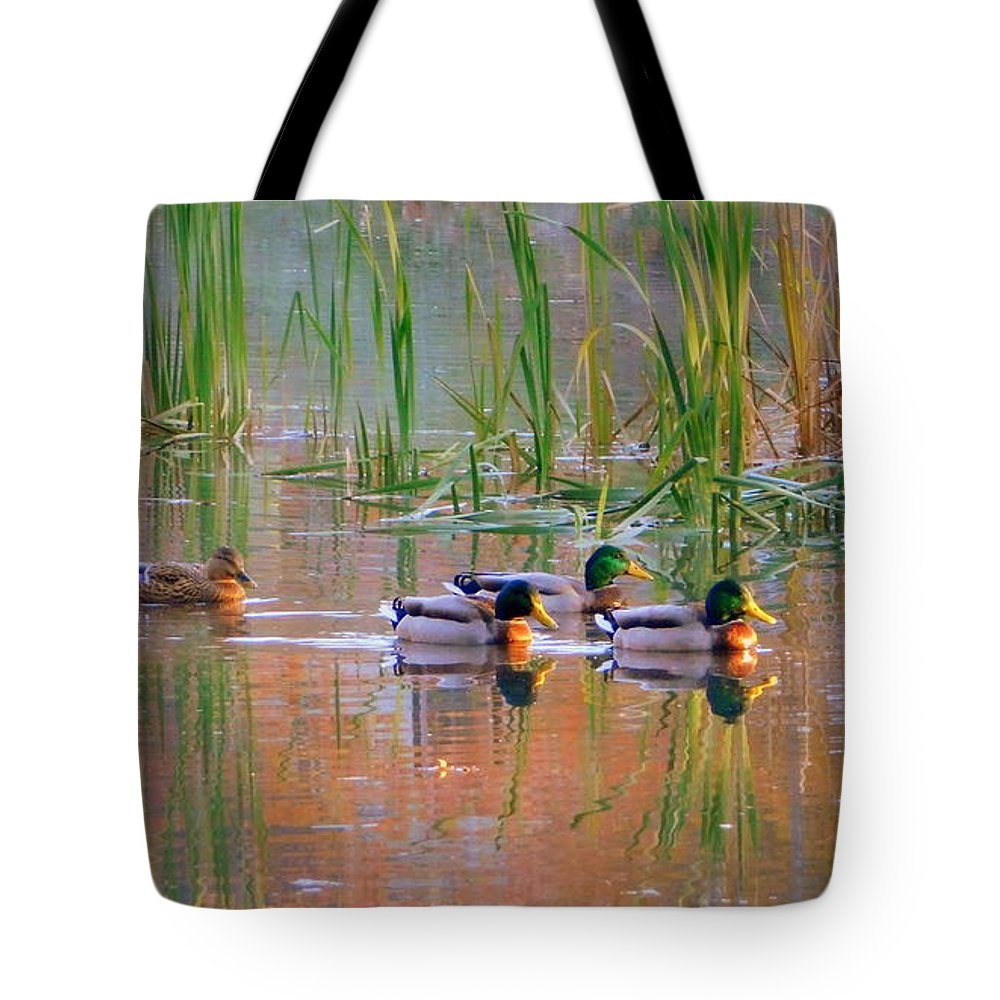 Got My Ducks In A Row Tote Bag featuring the photograph Got My Ducks In A Row by Karen Cook