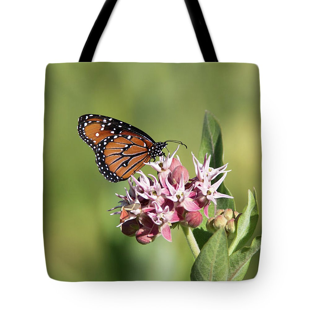 Butterfly Tote Bag featuring the photograph Grafton Queen by Maria Jeffs