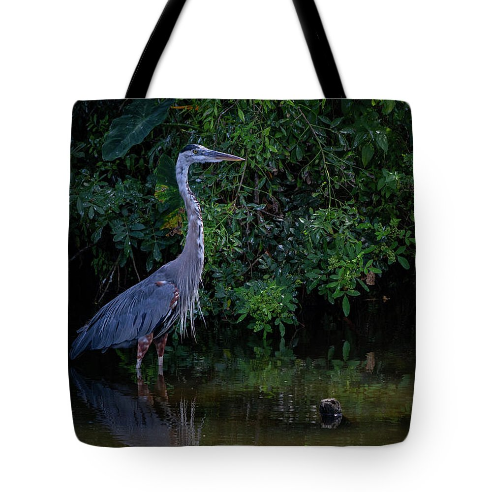 Heron Tote Bag featuring the photograph Great Blue Heron by Blair Howell