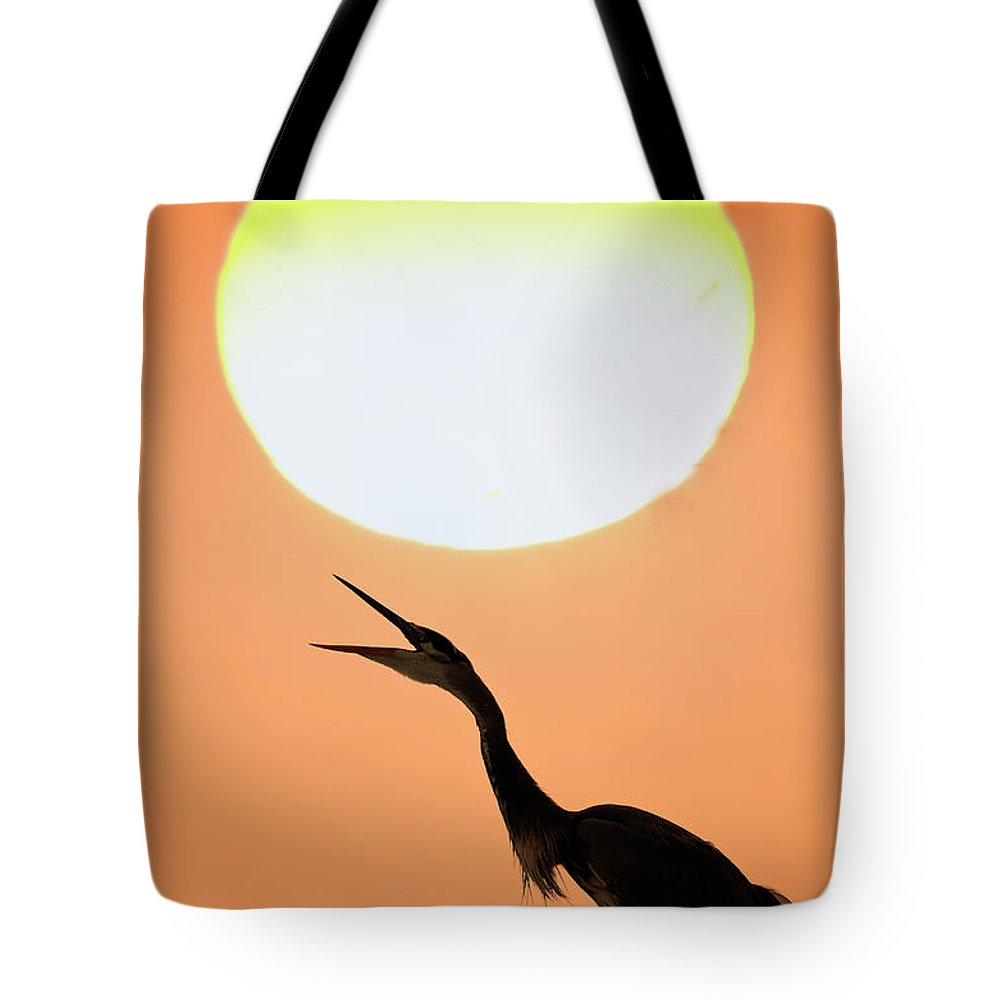 Animal Themes Tote Bag featuring the photograph Great Blue Heron, Screeching, Sunset by Mark Newman