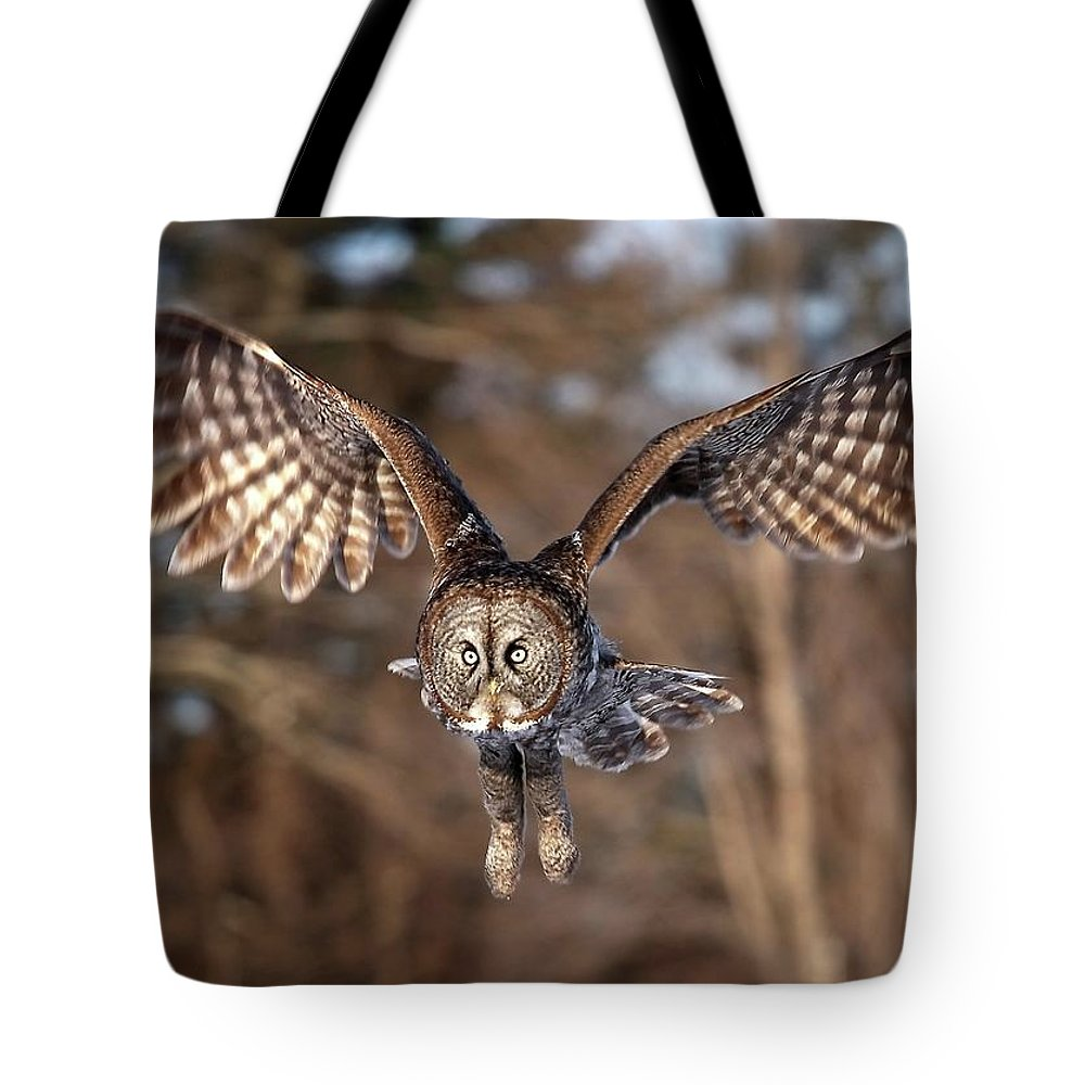Animal Themes Tote Bag featuring the photograph Great Gray Owl Swoops Down by Jim Cumming