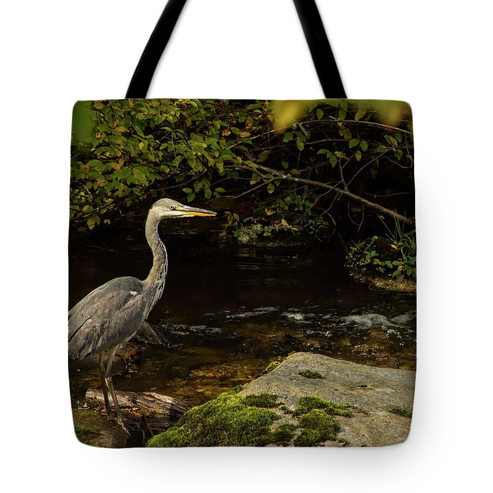 Ardea Cinerea Tote Bag featuring the photograph Grey Heron Fishing by Robert Murray