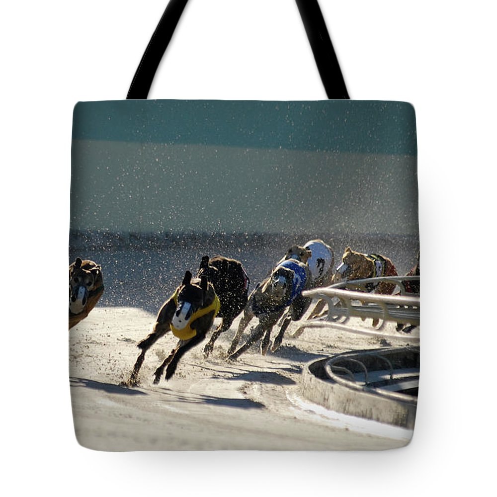 Dust Tote Bag featuring the photograph Greyounds 3 Of 7 by Dplight