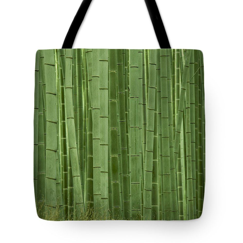 Bamboo Tote Bag featuring the photograph Grove Of Bamboo Trees Phyllostachys by Akira Kaede