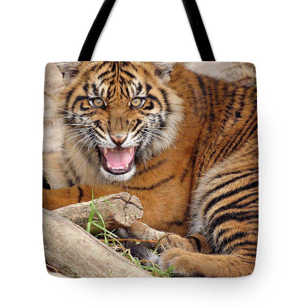 Snarling Tote Bag featuring the photograph Growling Tiger by S. Greg Panosian