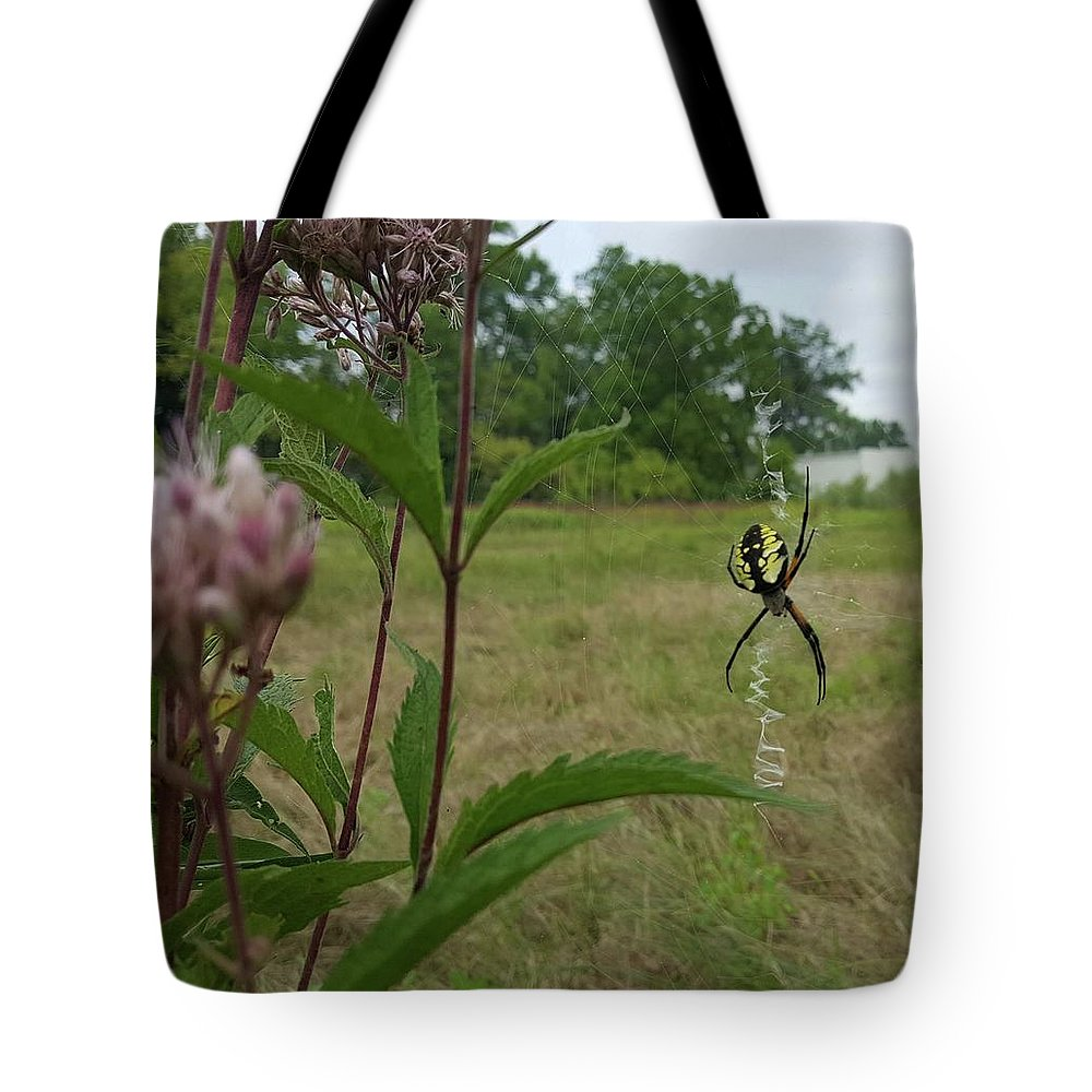 Field Pink Spider Bug Yellow Black Green Leaves Flower Nature Tote Bag featuring the photograph Hangin Around by Lisa Bates
