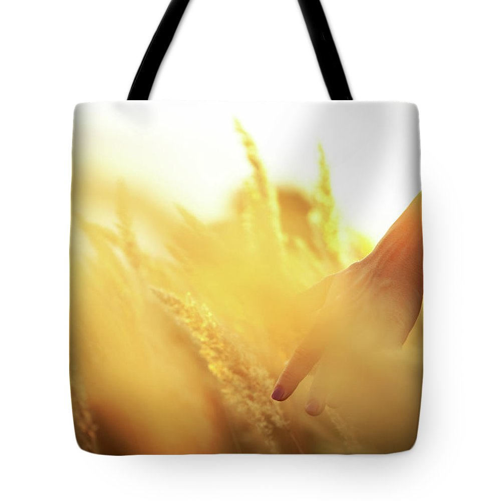 Farm Worker Tote Bag featuring the photograph Harvest In The Morning by Aleksandarnakic
