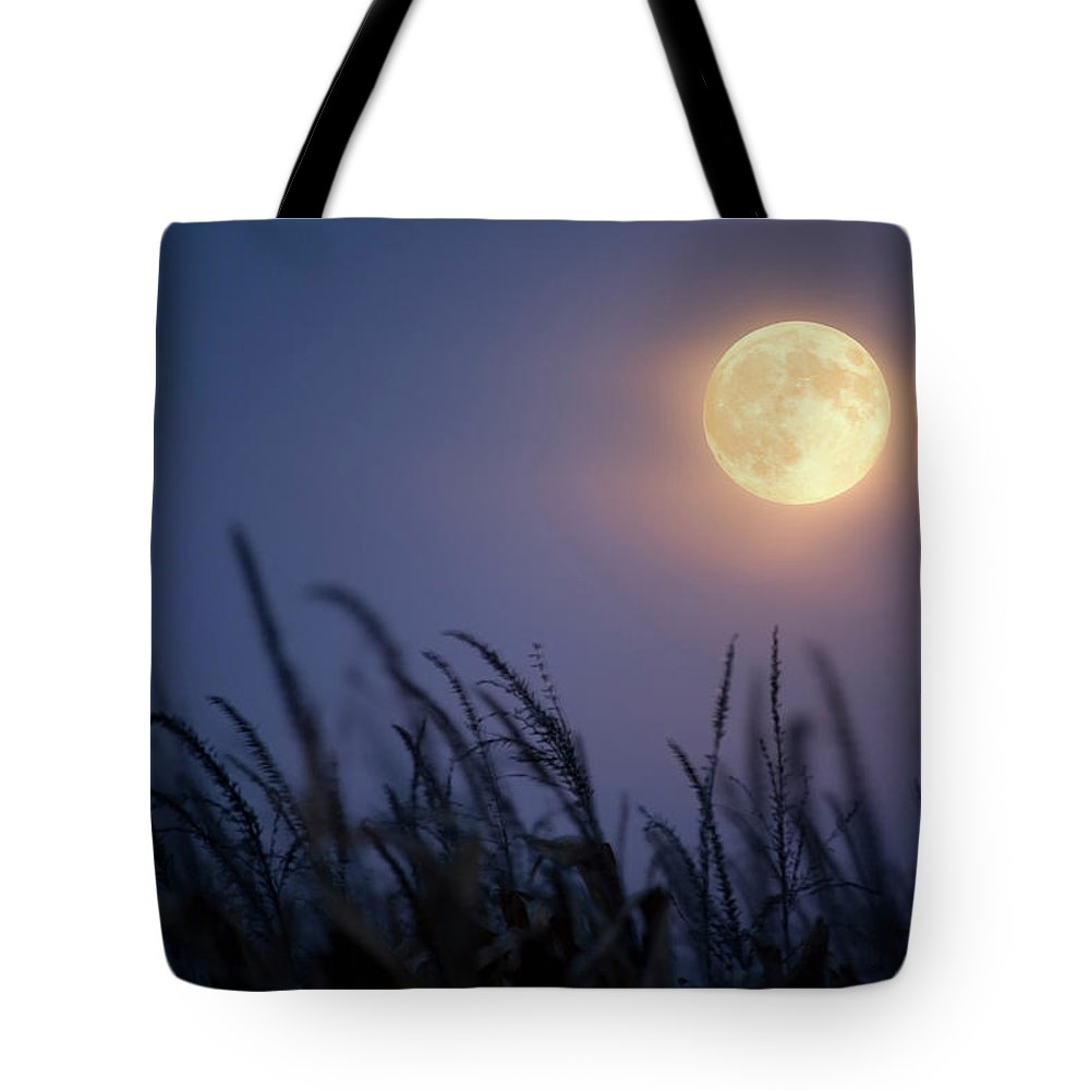 Sky Tote Bag featuring the photograph Harvest Moon by Jimkruger