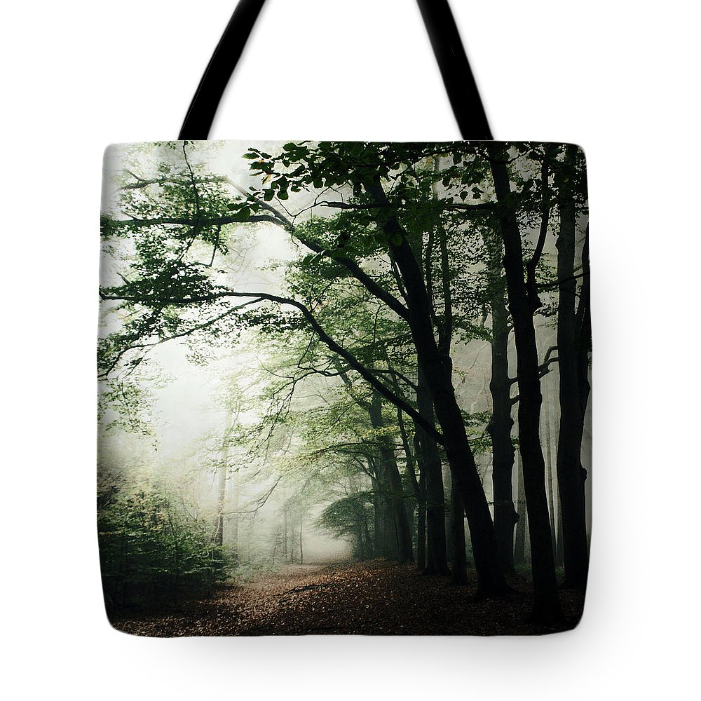 Scenics Tote Bag featuring the photograph Haunted Forest by Bob Van Den Berg Photography