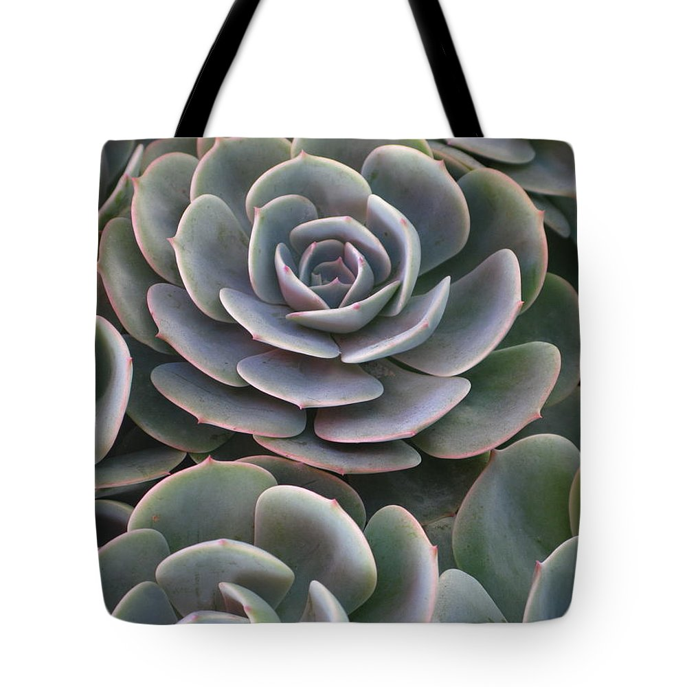 Scenics Tote Bag featuring the photograph Hens And Chicks Plant Full Frame by Sassy1902