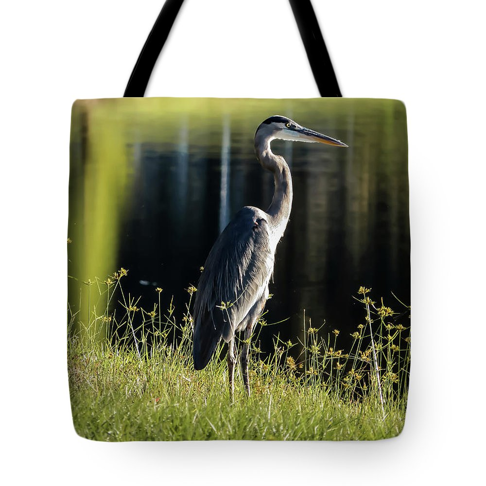 Heron Tote Bag featuring the photograph Heron by Zina Stromberg