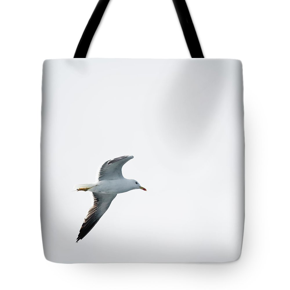 Sweden Tote Bag featuring the photograph Herring Gull In Flight by Magnusson, Roine