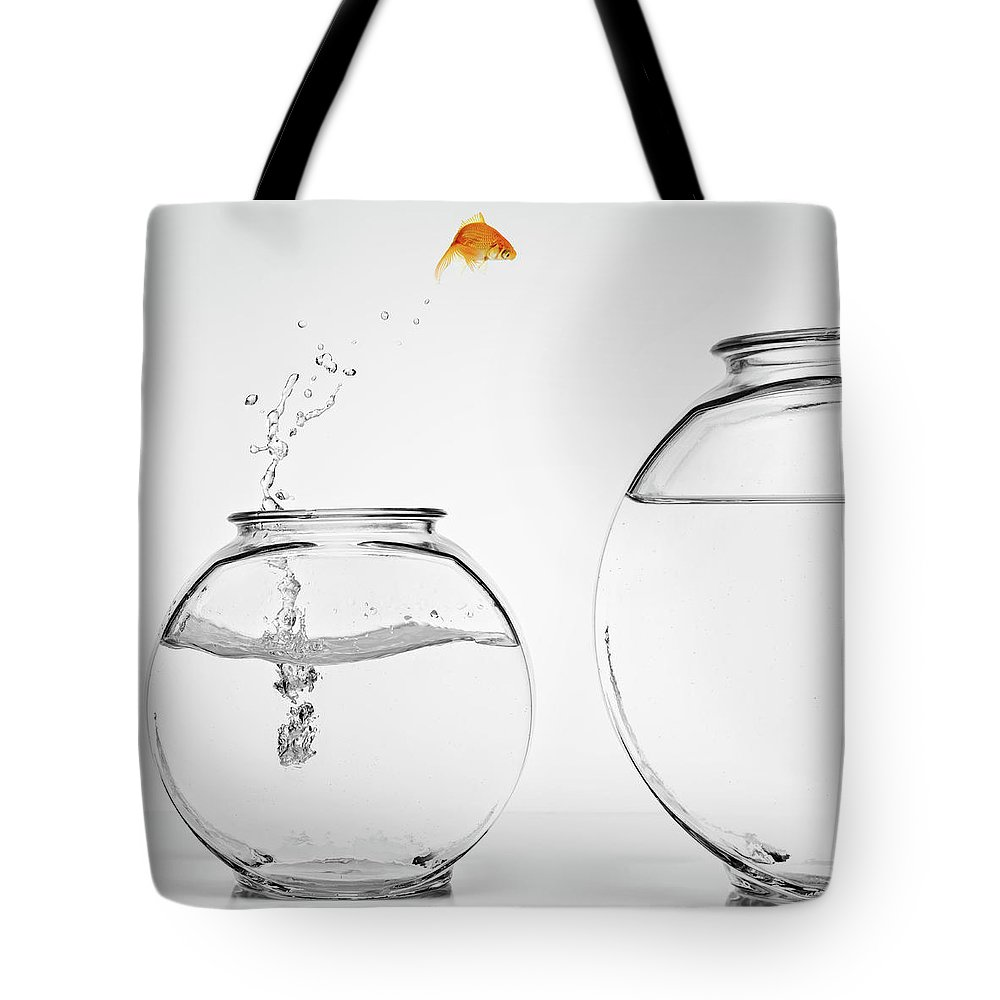 Pets Tote Bag featuring the photograph Home Improvement by Mphillips007
