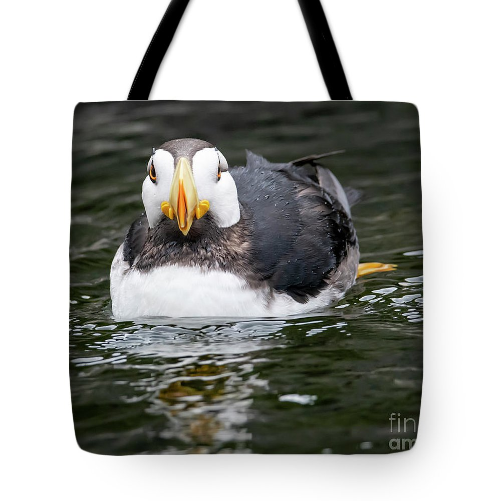 Puffin Tote Bag featuring the photograph Horned Puffin Portrait by Mike Dawson