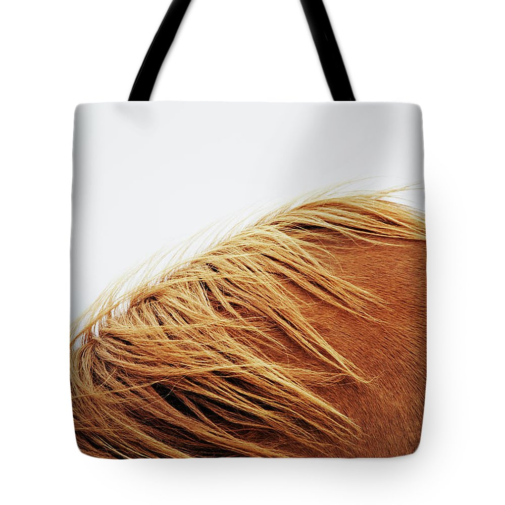 Animal Themes Tote Bag featuring the photograph Horse, Close-up by Markus Renner