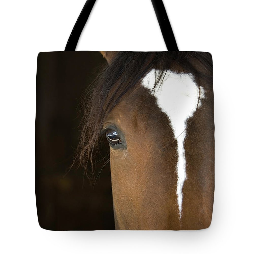 Horse Tote Bag featuring the photograph Horse Head by Rterry126