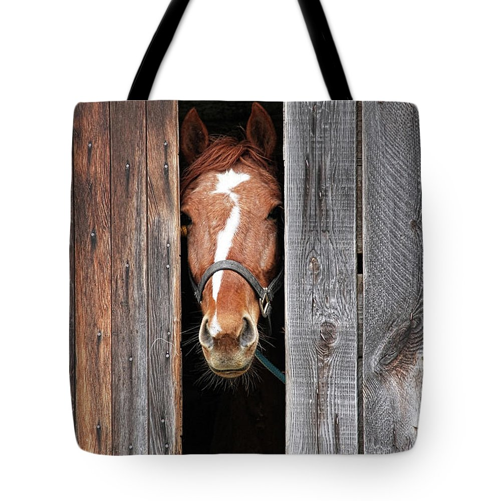 Horse Tote Bag featuring the photograph Horse Peeking Out Of The Barn Door by 2ndlookgraphics