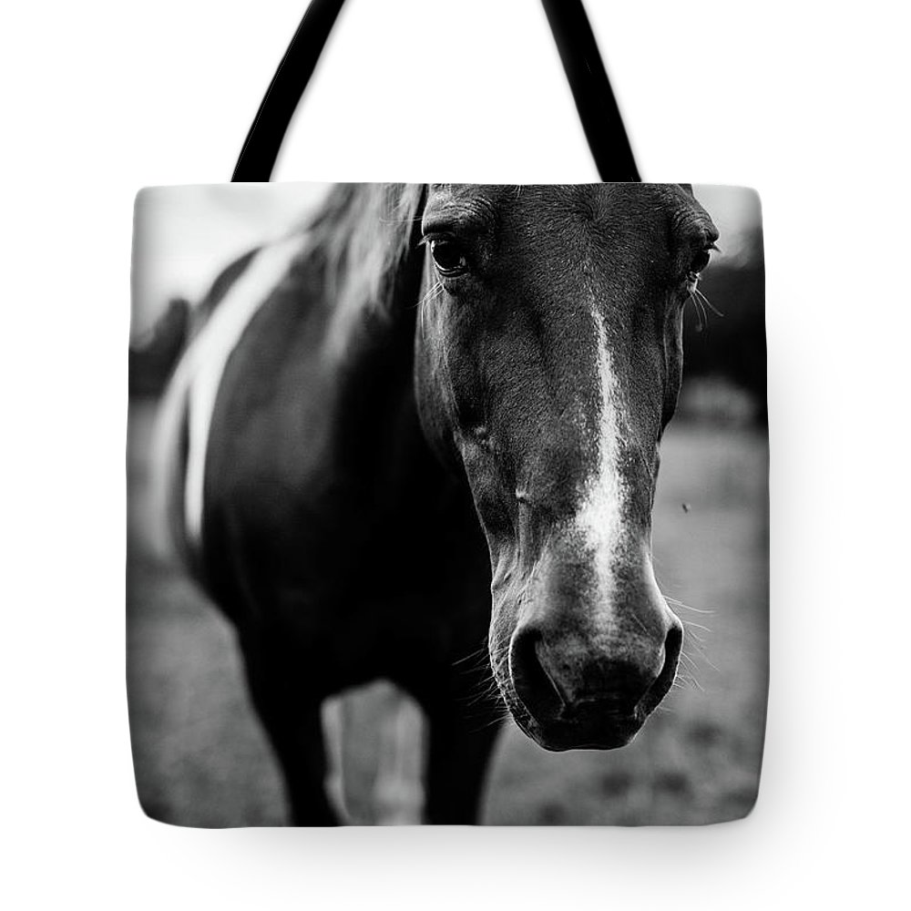 Horse Tote Bag featuring the photograph Horse by Taylor Richesin