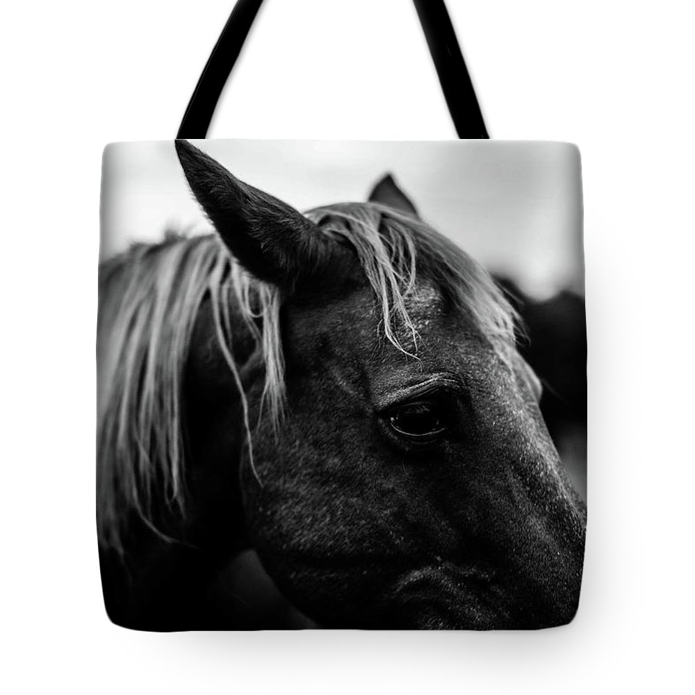 Horse Tote Bag featuring the photograph Horse Up-close by Taylor Richesin