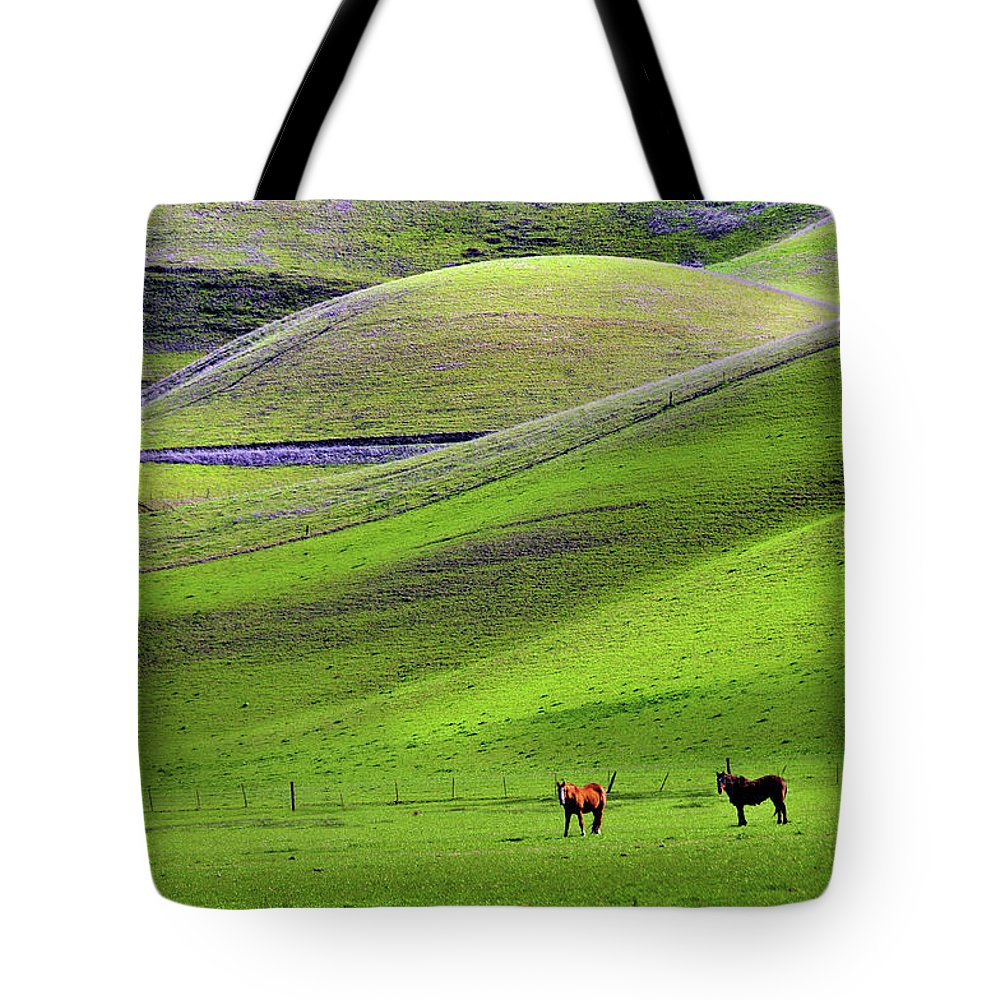 Horse Tote Bag featuring the photograph Horses In Hill Country by Mitch Diamond