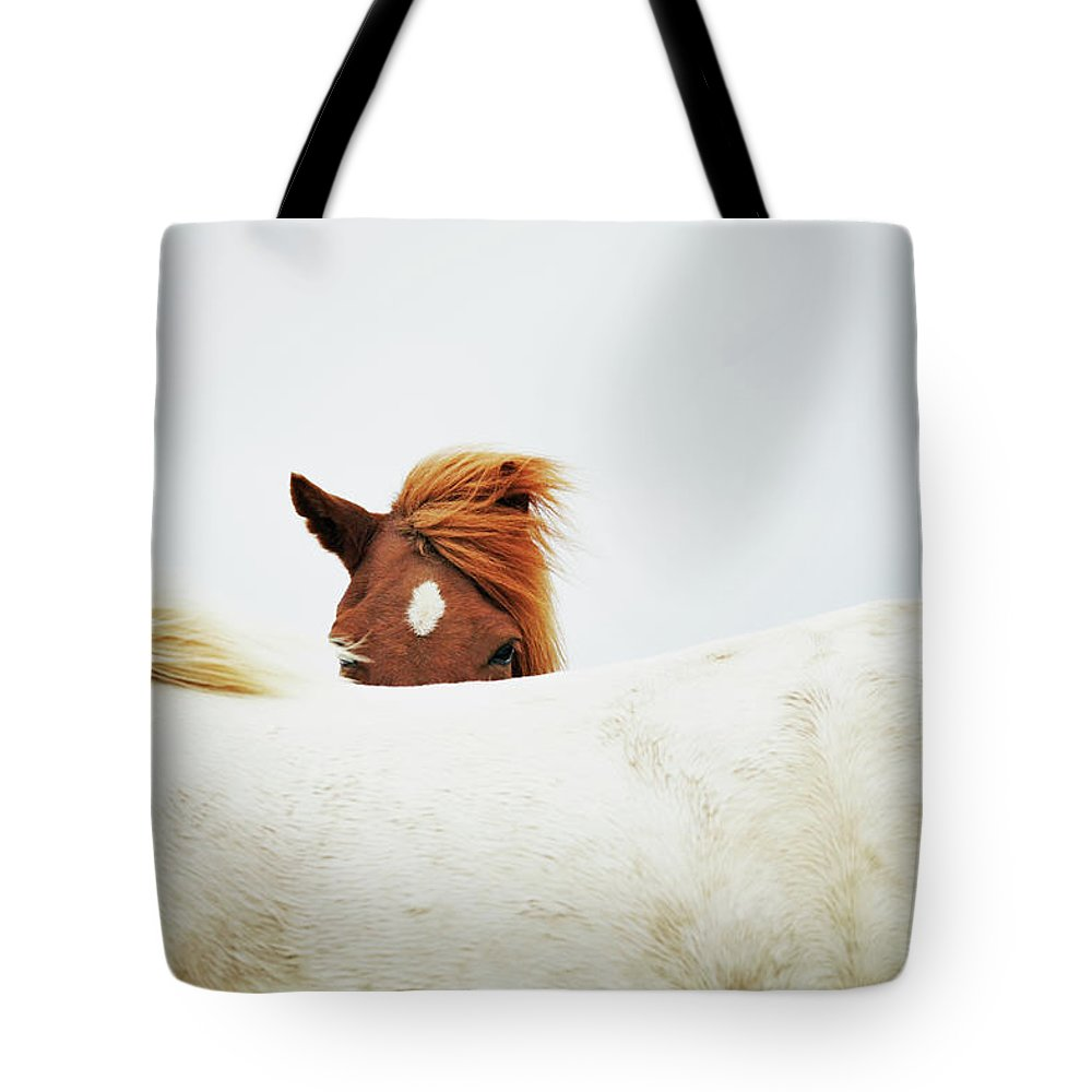Animal Themes Tote Bag featuring the photograph Horses by Markus Renner