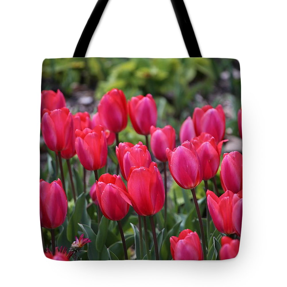 Tulip Tote Bag featuring the photograph Hot Pink Tulip by Alina Avanesian