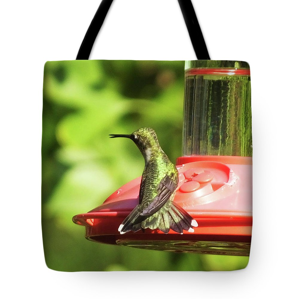 Green Bird Tote Bag featuring the photograph Hummingbird 106 by Lizi Beard-Ward