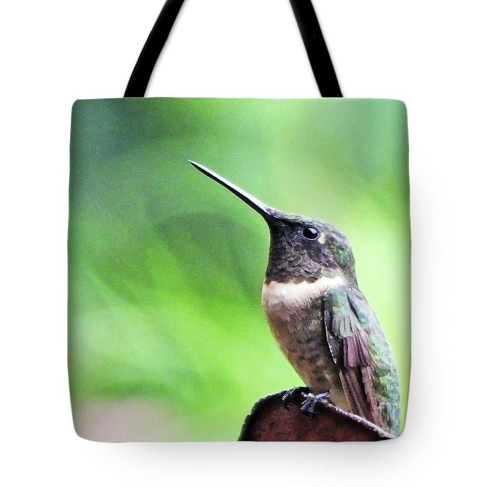 Male Tote Bag featuring the photograph Hummingbird 90 by Lizi Beard-Ward