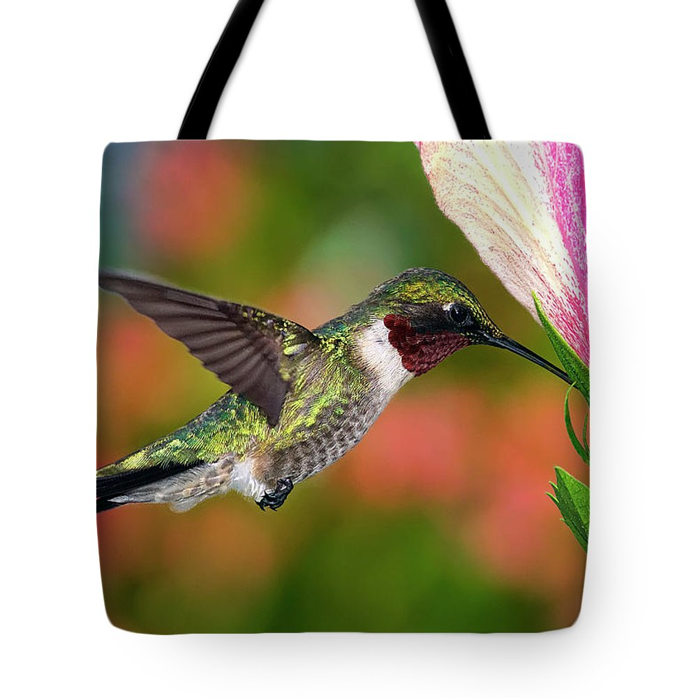 Animal Themes Tote Bag featuring the photograph Hummingbird Feeding On Hibiscus by Dansphotoart On Flickr