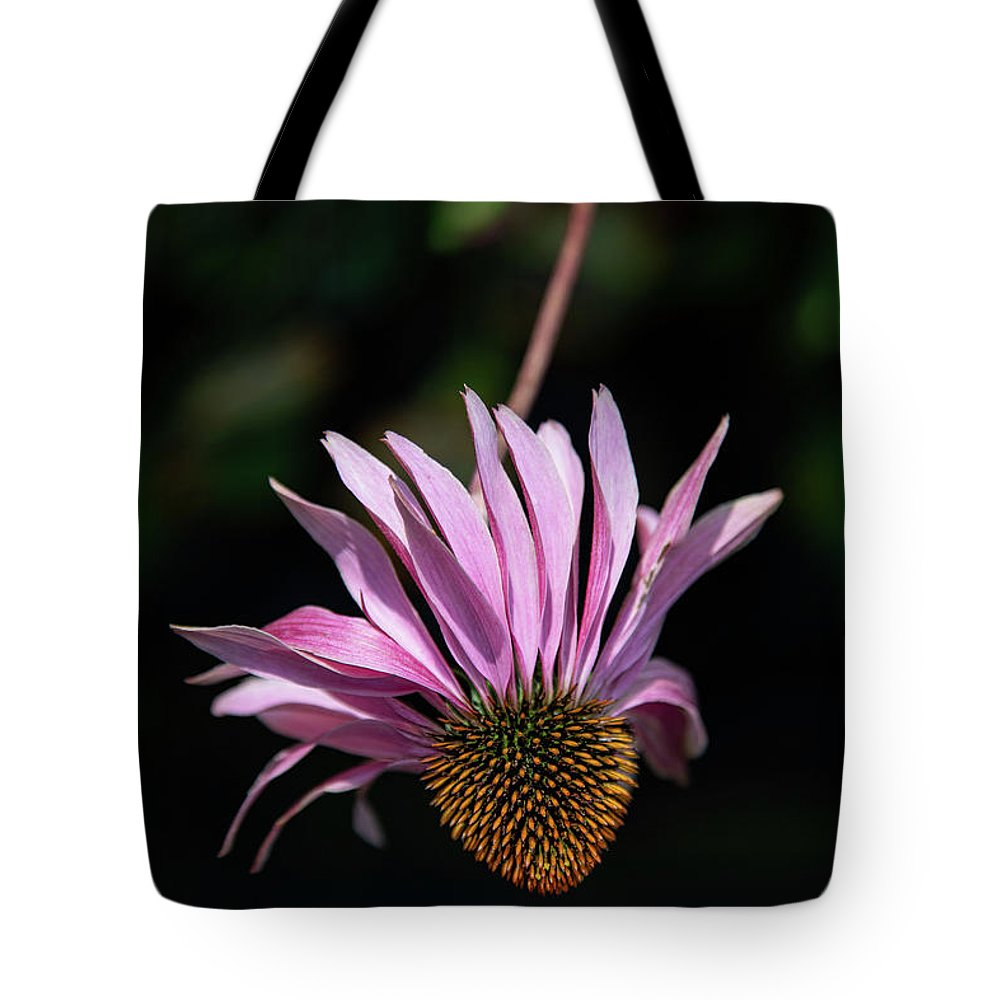Cole's Flowers Tote Bag featuring the photograph I Will Remember Summer by Marilyn Cornwell