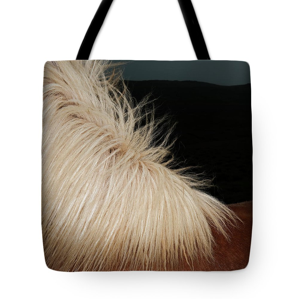 Horse Tote Bag featuring the photograph Icelandic Horse by Roine Magnusson
