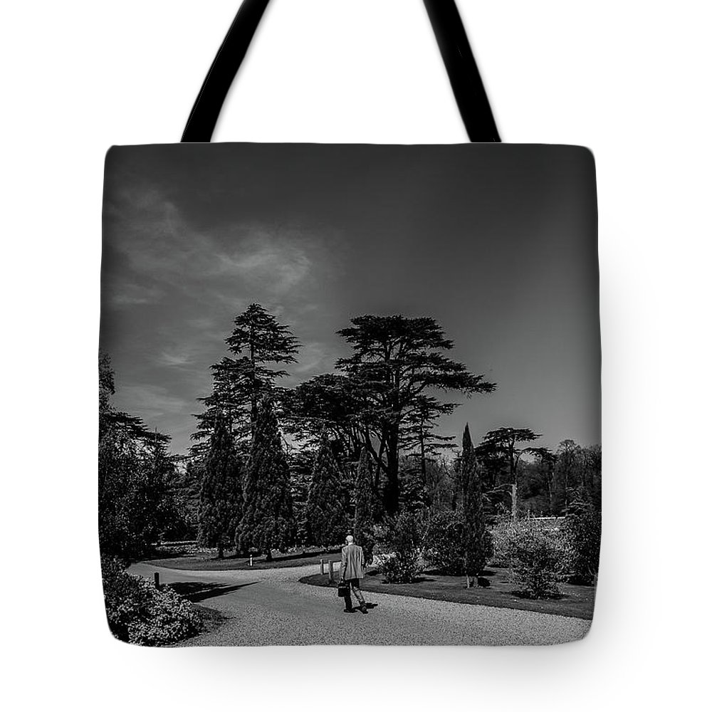 Young Girl Tote Bag featuring the photograph Ickworth House, Image 41 by Jonny Essex