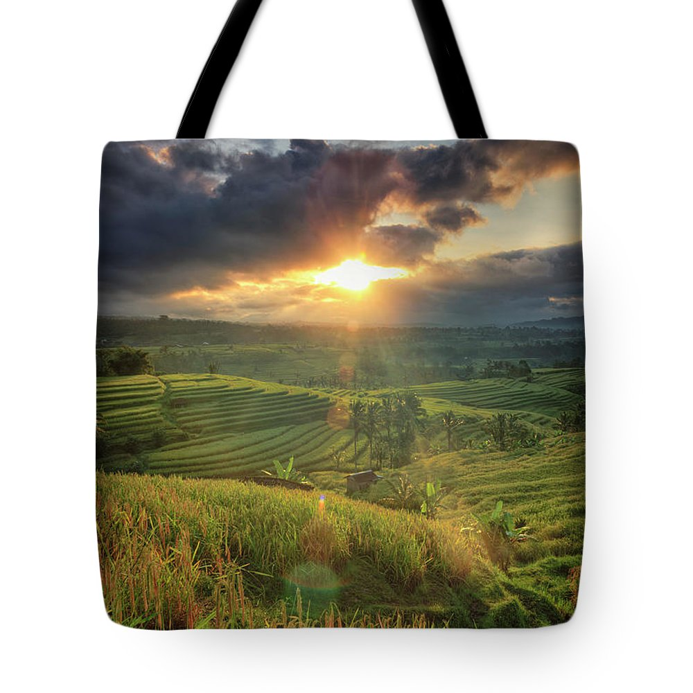 Tranquility Tote Bag featuring the photograph Indonesia, Bali, Jatiluwih Rice Terraces by Michele Falzone