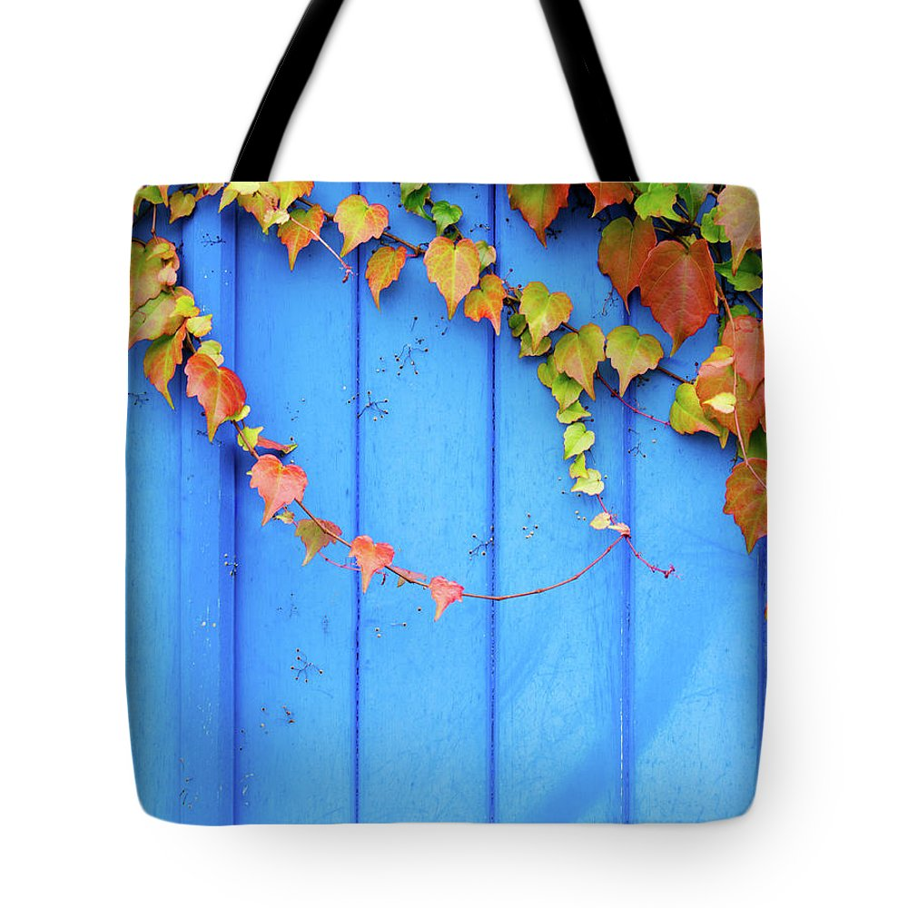 Architectural Feature Tote Bag featuring the photograph Ivy On The Door by Zianlob