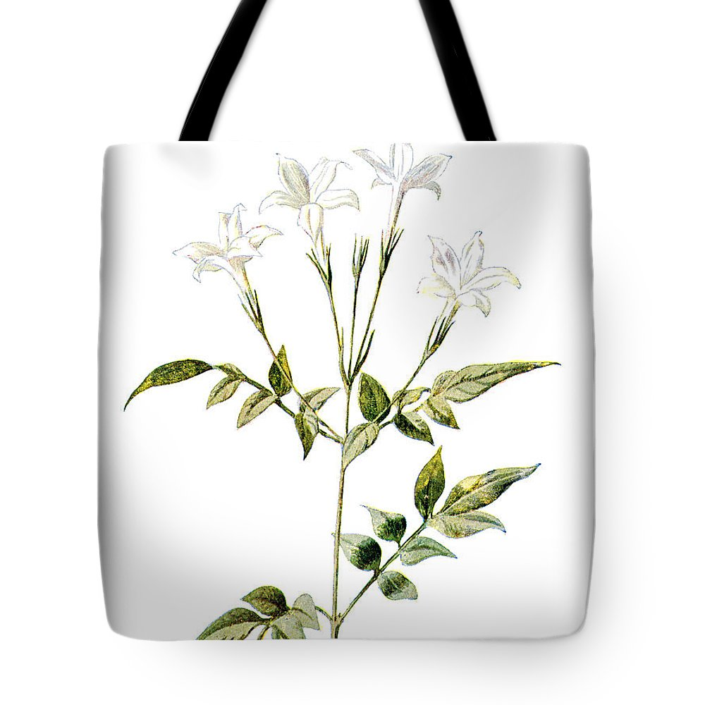 Jessamine Tote Bags