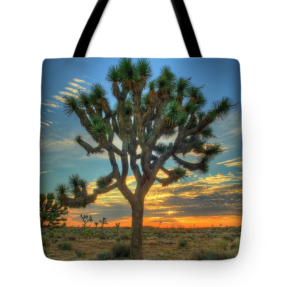 Scenics Tote Bag featuring the photograph Joshua Tree At Sunrise by Photograph By Kyle Hammons