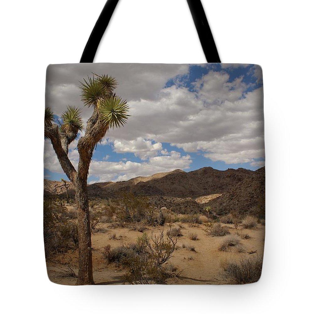 Joshua Tree Tote Bag featuring the photograph Joshua Tree National Park by Angel La Canfora