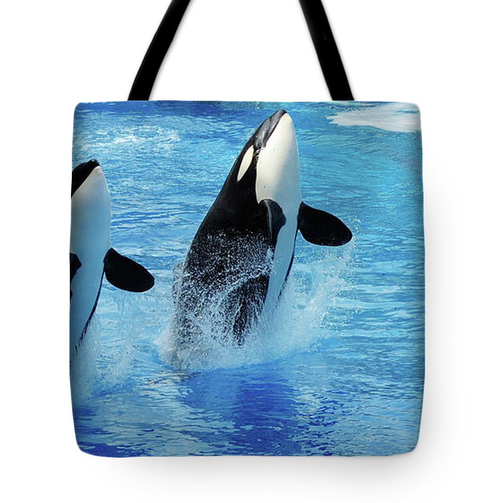 Panoramic Tote Bag featuring the photograph Killer Whale Family Jumping Out Of Water by Purdue9394